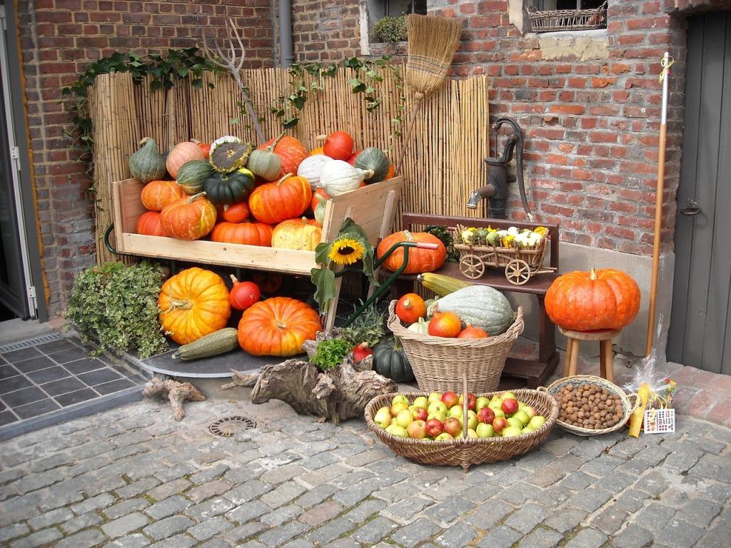 7 pumpkins-939296_1280