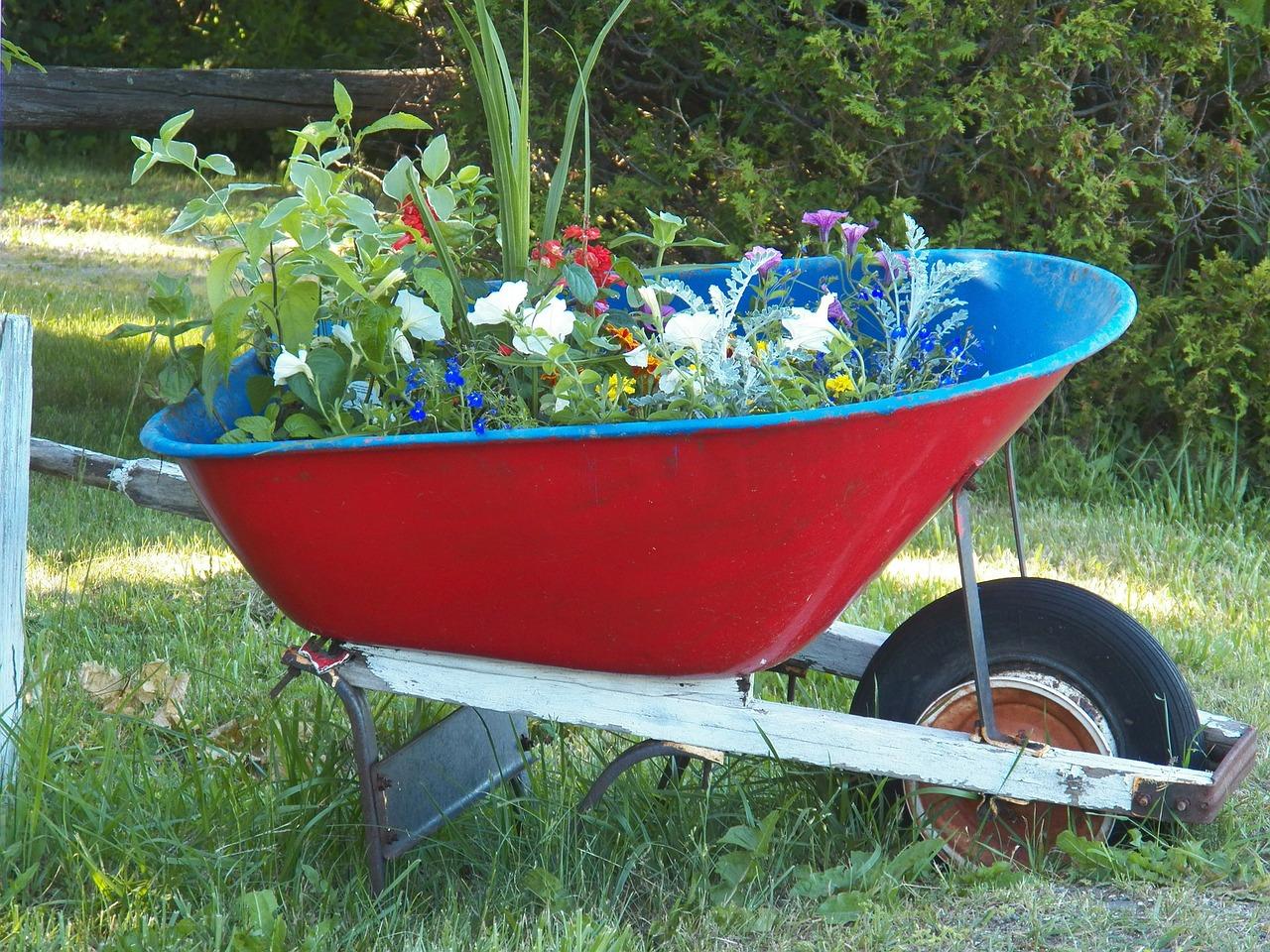 kvetiny-kolecko-zahrada